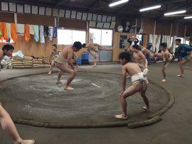 わんぱく相撲 練習会