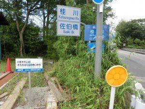 白井颯汰(東桂小学校5年)